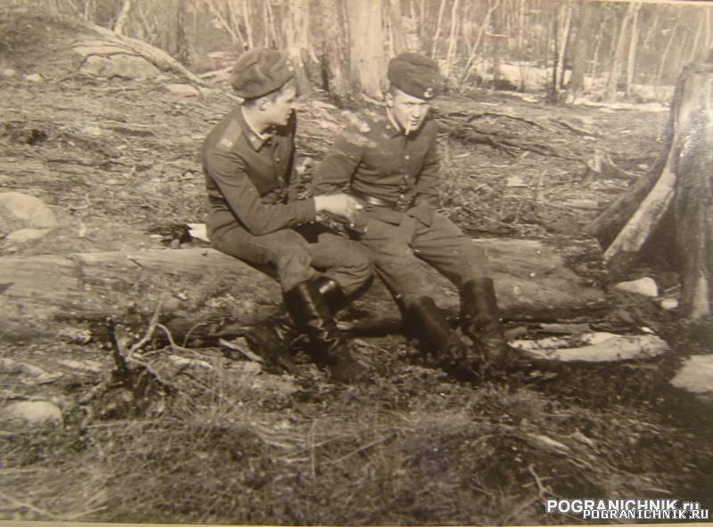 Никель. весна 1984г. Химический лес за гарнизоном.