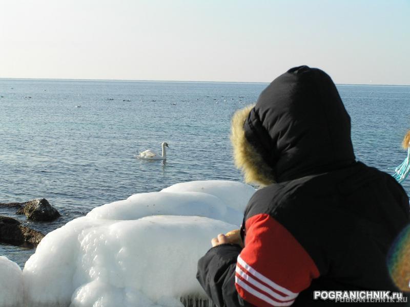 Зима2006.JPG