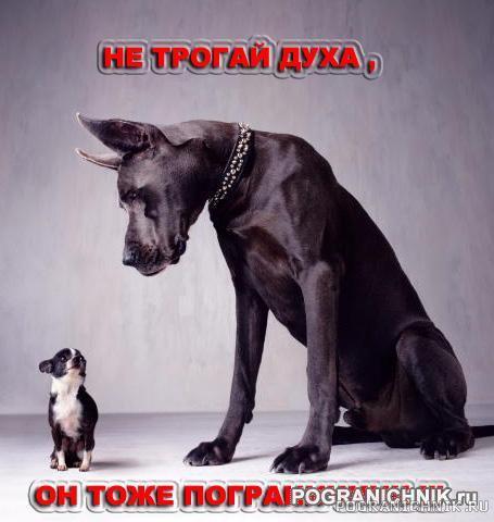 НЕ трогай ...