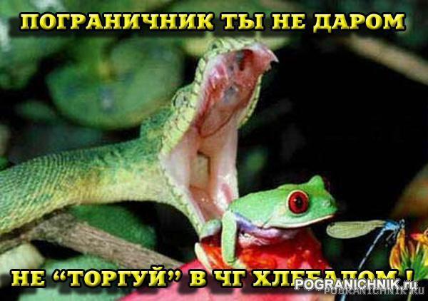 Пограничник ты не даром !!!