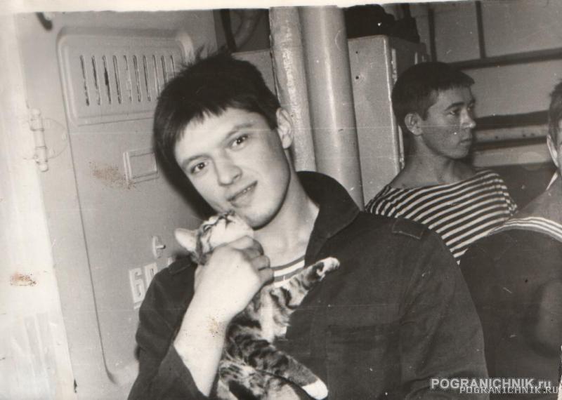 лис и пограничный кот.jpg