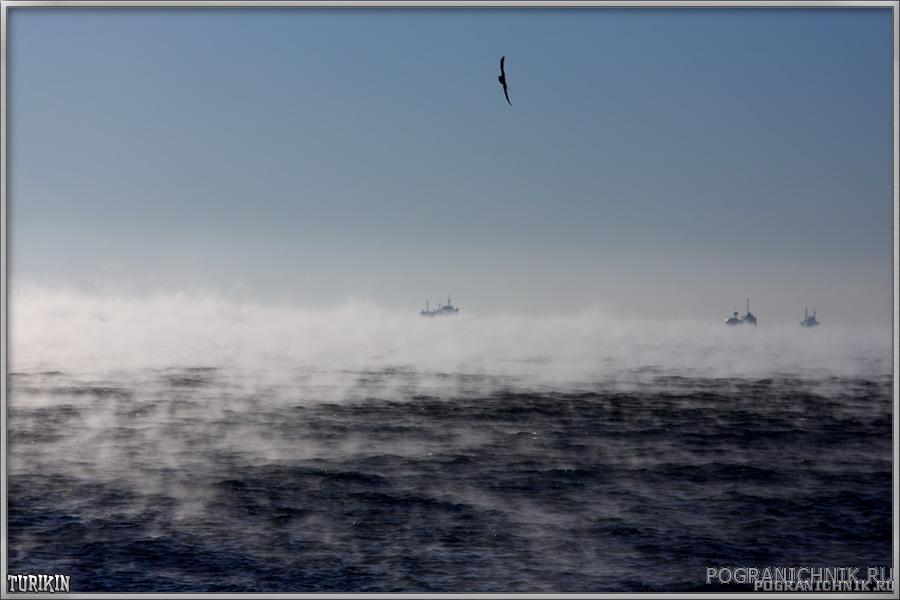 Море закипает...