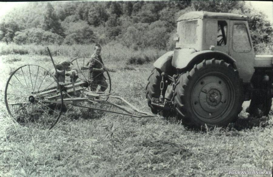 """""""Синий ключ"""" лето 1987, заготовка сена"""