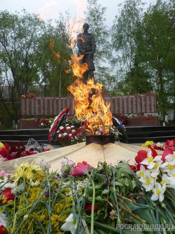 9 мая. Вечный огонь. г. Одинцово