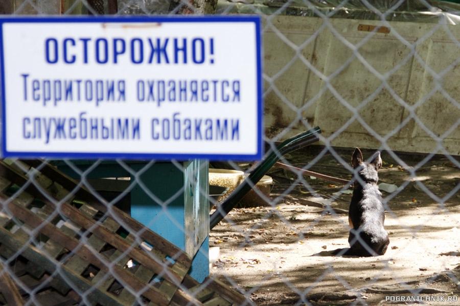 Надёжная охрана..)))