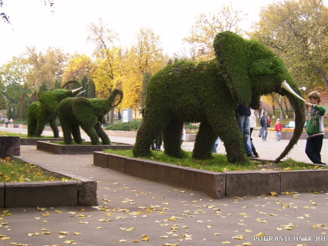 К слонам не приСЛОНяться!!!
