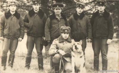 кпп Гродно 80-82