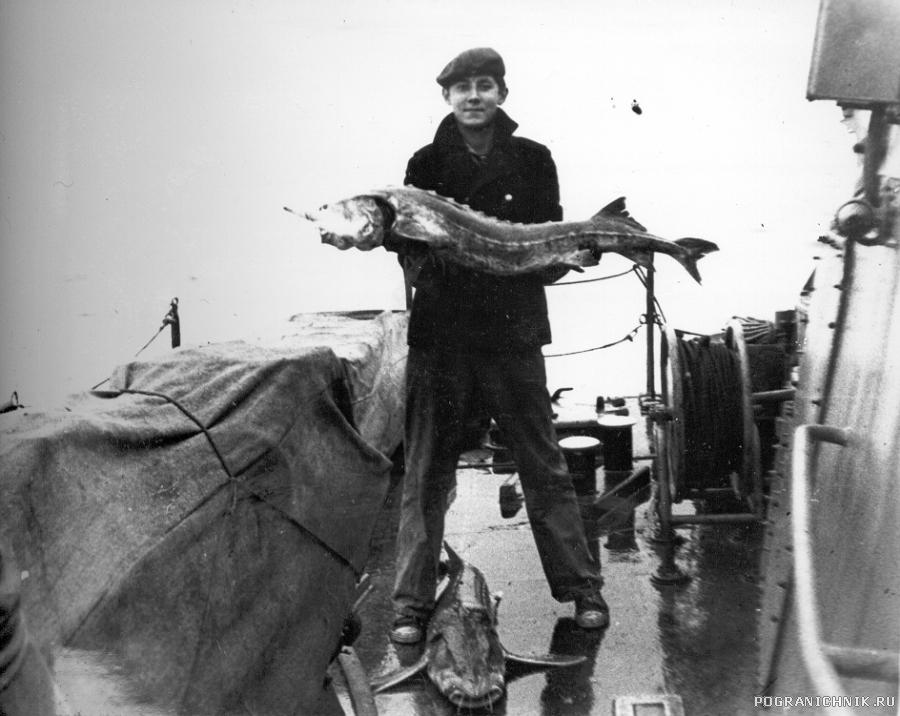 Улов.684.1981