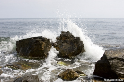 Брызги чёрного моря