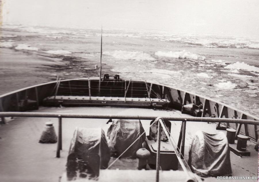В льдах Белого моря  корма ,,Ладоги,,