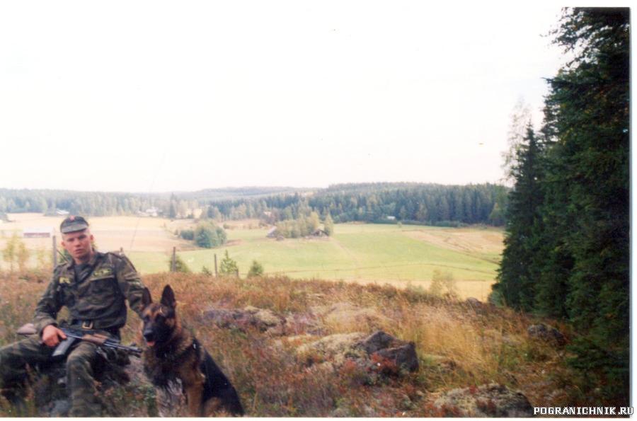 12 погз 2001 кискисаари