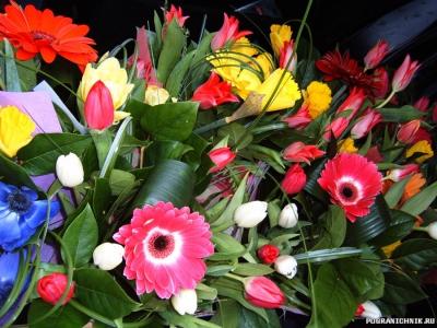 Цветочки для женщин! С 8 марта!