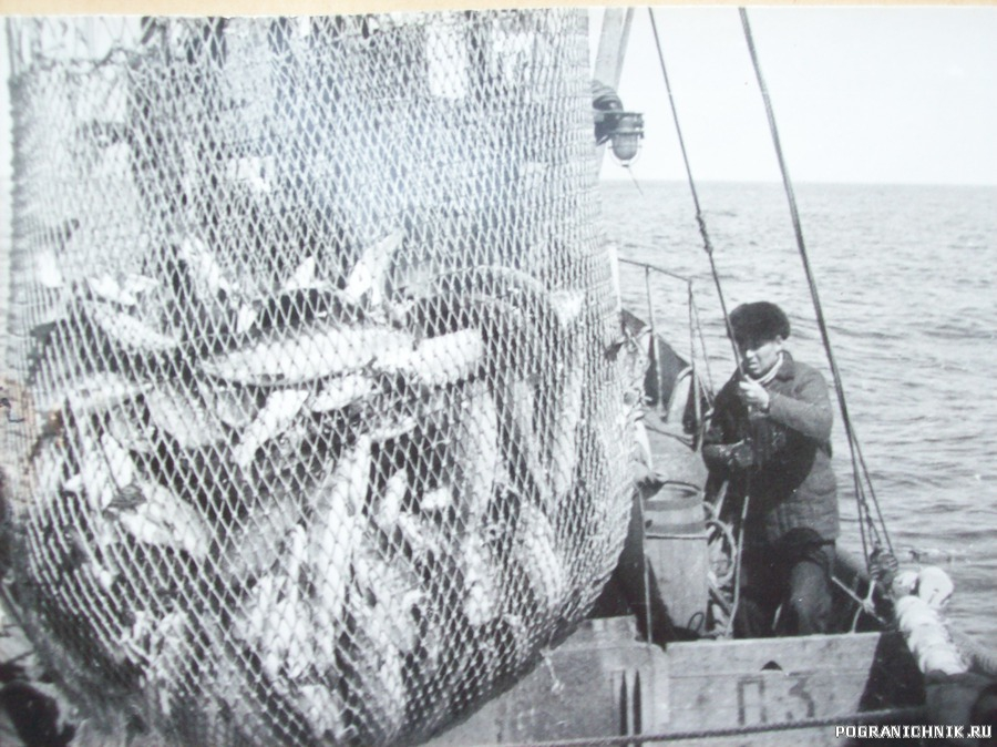 рыбаки угощают рыбкой .