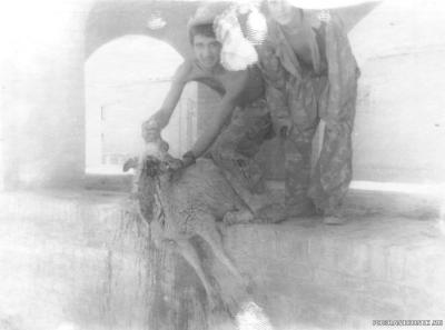 Анхой, лето 1982