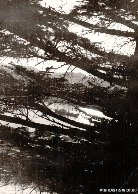 Шикотан 1984г.