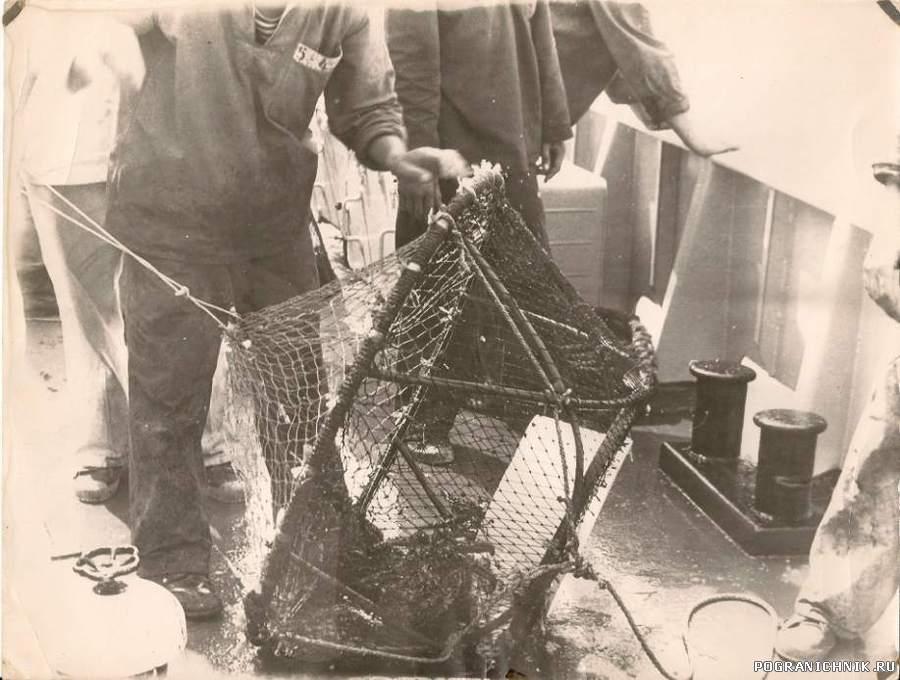 Корзина для ловли краба