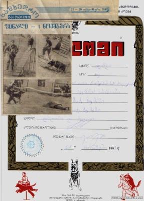 пёс Амур 1981-1983