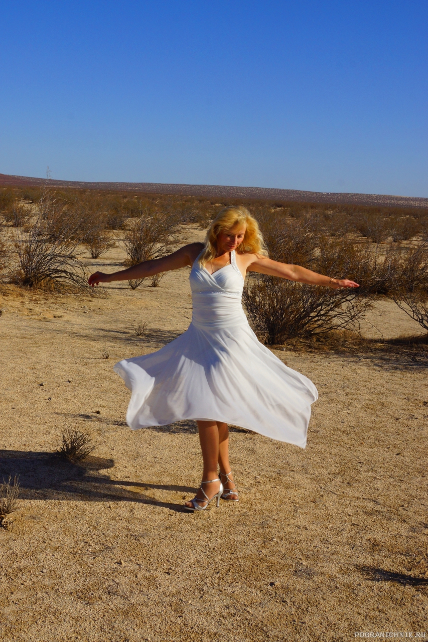 В пустыне Мохаве.