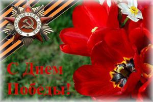 post-9701-1273394674_thumb.jpg